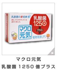 免疫ビタミン|マクロ元気乳酸菌1250億プラス